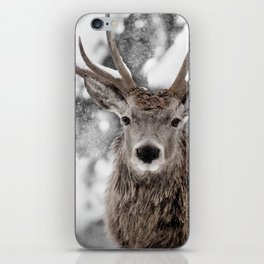 WINTER STAG iPhone Skin