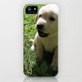 Gggrrr Yellow lab puppy iPhone Case