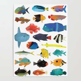 Tropical Fish chart Poster