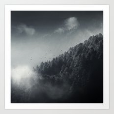 Misty Woodlands Art Print