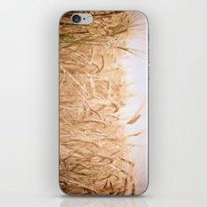 Golden Summer iPhone & iPod Skin