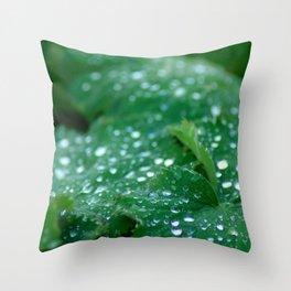 Dew on a leaf Throw Pillow