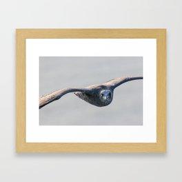 Partner in flight! Framed Art Print