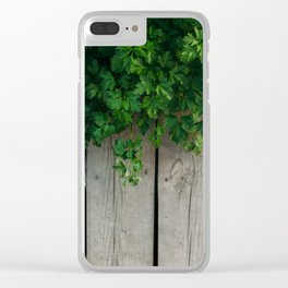 Boards and fennel Clear iPhone Case