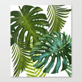 Palm and Monstra Canvas Print
