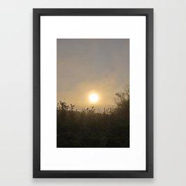 Thistles Mist 01/11 Framed Art Print