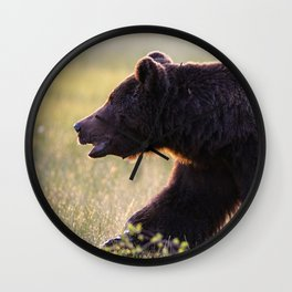 Brown bear in backlight Wall Clock