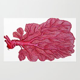 Venus red sea fan coral Rug