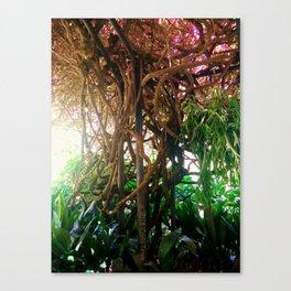 A Trip Through The Garden Canvas Print