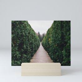 French Garden Mini Art Print
