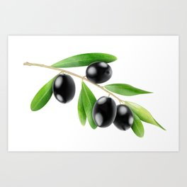 Branch with olives Art Print