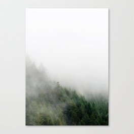 Foggy Oregon forest Canvas Print