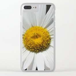 Contemporary White Daisy on Grey Pop Of Yellow Art A490 Clear iPhone Case