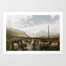 Traffic in The Scottish Highlands Art Print