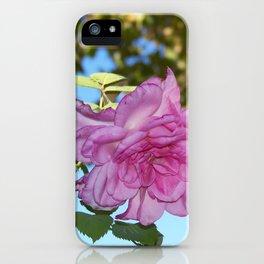 in Focus iPhone Case