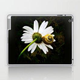 Daisy and snail Laptop & iPad Skin