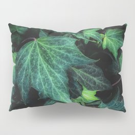 closeup green ivy leaves background Pillow Sham