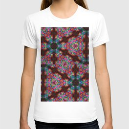 Through The Looking Glass 8 T-shirt