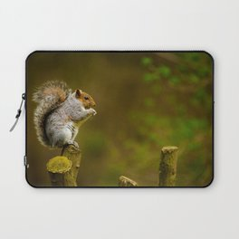 Cute Squirrel (Color) Laptop Sleeve