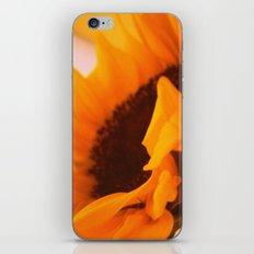 SunflowerPower ~ retro sunny orange flower iPhone & iPod Skin