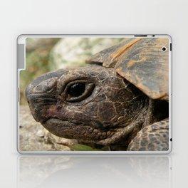 Close Up Side Portrait Of A Turkish Tortoise Laptop & iPad Skin