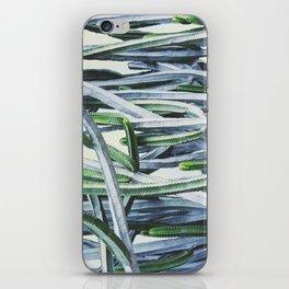 Green Crush Cactus I iPhone Skin
