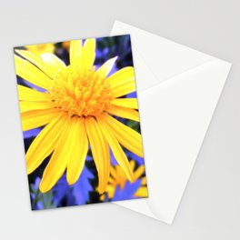 Atomic Daisy Stationery Cards