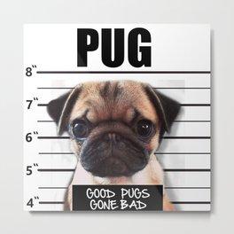 good pugs gone bad Metal Print
