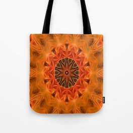 The Enlightenment Tote Bag