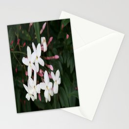 Delicate White Jasmine Blossom with Green Background Stationery Cards