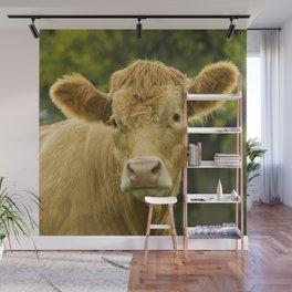 Hey Cow Wall Mural