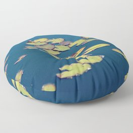 float Floor Pillow