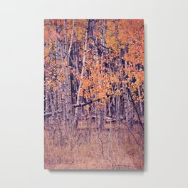 Autumn Orange I Metal Print