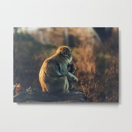 Macaque Motherly Love Metal Print