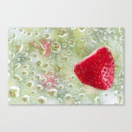 Strawberry Kiwi Canvas Print