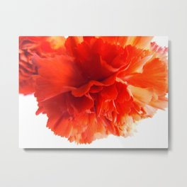 Your flower warms my heart  Metal Print