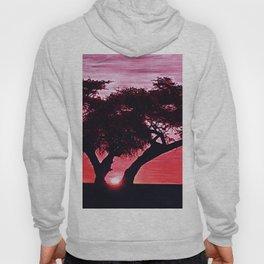 Cherry Blossom Sunset Hoody