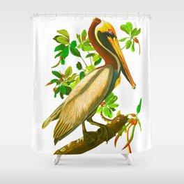 Brown Pelican Vintage Illustration Shower Curtain