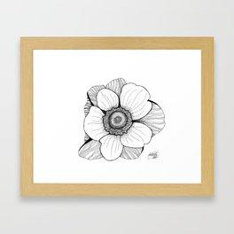Anmone flower Framed Art Print