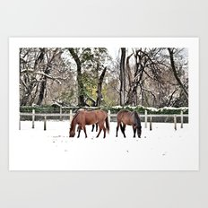 Colts Neck Snow Art Print