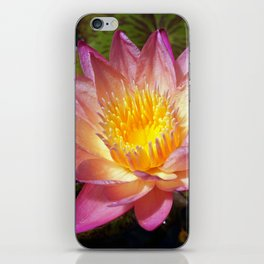 Lovely Pink Water Lily iPhone Skin