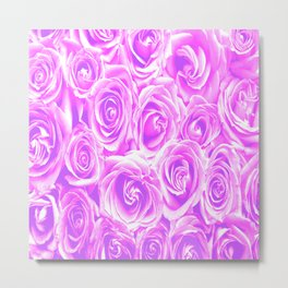 Lovely purple and pink roses Metal Print