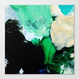 Palette No. Twenty Nine Canvas Print