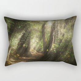 Lost In the Light Rectangular Pillow