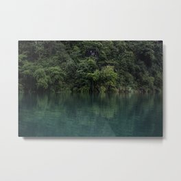 Trees on the Riverbank Metal Print