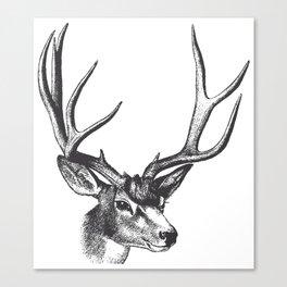 Vintage Deer Canvas Print
