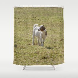 Goat - baby Shower Curtain