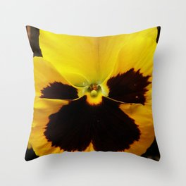 Golden Black Eyed Pansy Violet Yellow Flower Throw Pillow