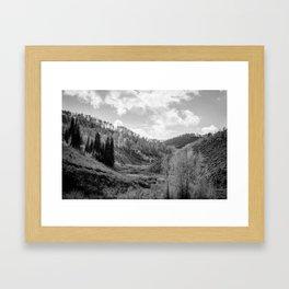 Cache National Forest  Framed Art Print