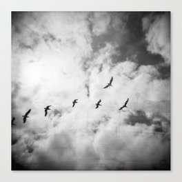 """Bird Silhouettes"" Holga double exposure Canvas Print"